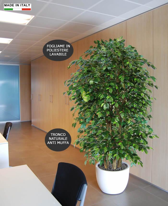 Vuoi Dare Un Tocco In Più Al Tuo Ufficio? Perchè Non Comprare Un Ficus  Benjamin Finto?