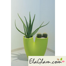 vaso-di-design-h31601